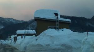 屋根の雪下ろしの様子